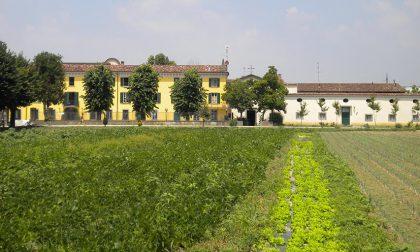 Spesa a domicilio a Romano: Gasparina di Sopra cooperativa sociale