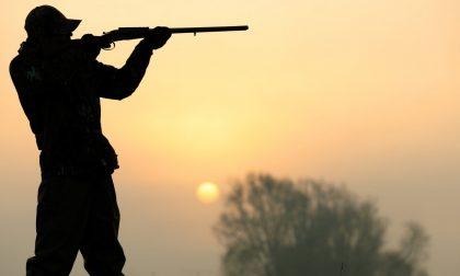 L'emergenza Covid-19 non ferma i bracconieri: denunciati