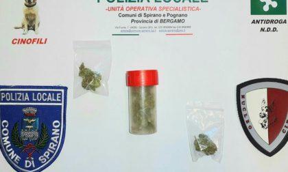 Al parco con la marijuana, non sfuggono al naso di Spiri