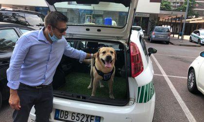 Buona la prima per Spiri a Verdellino:  al debutto scatta il sequestro FOTO