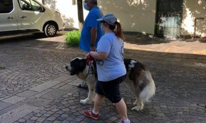 Con Hibiscus una giornata di pet therapy con Melody