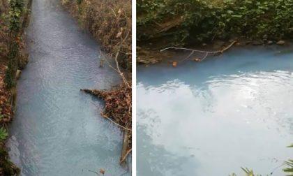 Acqua azzurra nelle rogge della Bassa: ma è inquinata