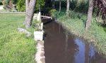 Liquami nel fontanile, allarme ambientale al Carpineto