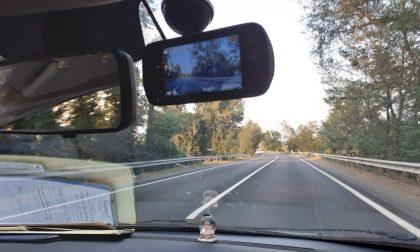 Fugge all'Alt della Polizia locale, preso grazie alle nuove dashcam