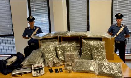In casa nascondeva 50 chili di marijuana, arrestato 29enne