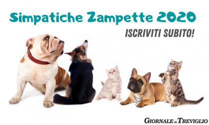 Simpatiche Zampette 2020: gli amici animali diventano i protagonisti