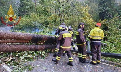 Maltempo: 36 interventi dei pompieri in poche ore, alcuni anche nella Bassa FOTO
