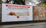 Pillola abortiva e cartelloni rimossi, FdI contro Gori