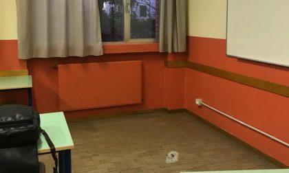 Sassaiola contro la scuola e contro gli operatori: è caccia ai vandali