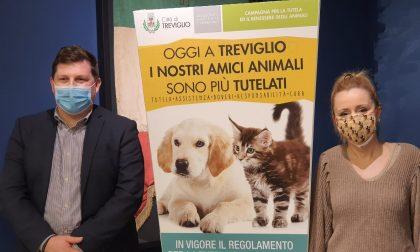 """Cani a Treviglio, Imeri: """"Troppe famiglie li prendono come status symbol e poi non li curano"""""""