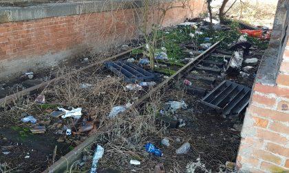 Siringhe e rifiuti, alla stazione di Calcio si è fermata la civiltà