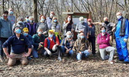 Torna Curiamo il Bosco d'inverno: volontari al lavoro al Cerreto