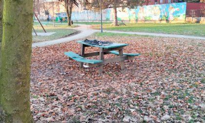 Falò al Parco Rosselli: incendiato un tavolo