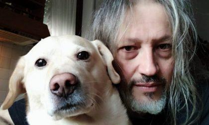 """""""Sono stato avvelenato da qualcuno che sa solo odiare"""": la storia del labrador Beethoven commuove il web"""