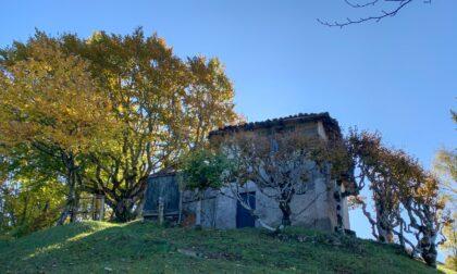 Roccoli lombardi, 80mila euro per conservazione e valorizzazione