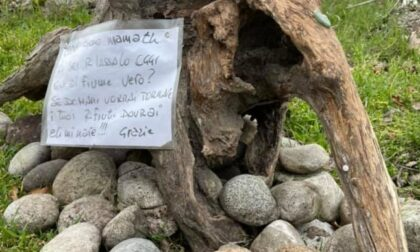 """Gli """"Ecoguardiani"""" che vigilano sull'Adda"""