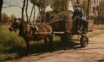 Addio al babbo Natale Aurelio Cremascoli, col cavallino e il carretto incantava i bambini