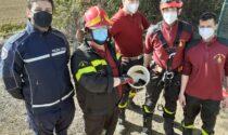 Tre pulcini di germano reale intrappolati nel pozzo, salvati dai Vigili del fuoco