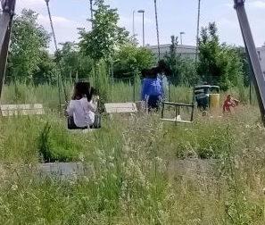 """Parco di via Santa Caterina? """"E' come fare un safari"""""""
