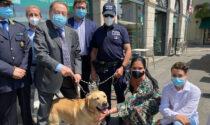 Trevi va in pensione: per fiutare la droga, a Treviglio arriva Athena