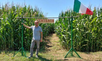 Nelle campagne di Treviglio spunta un labirinto nel mais