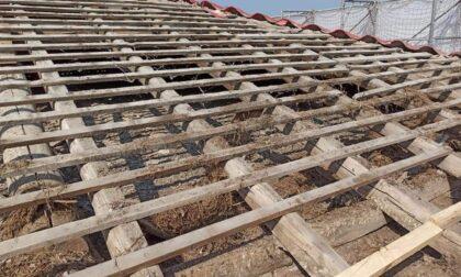 Trovato l'amianto sotto il tetto delle scuole elementari