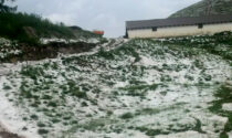 Maltempo, tempesta di ghiaccio su pascoli e alpeggi
