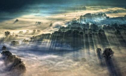 La nebbia sulla palude dell'Adda: ecco la foto meteo più bella del mondo