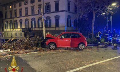 Pauroso schianto all'alba a Bergamo: illeso un automobilista